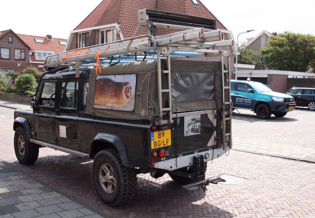Zeehond Wassenaar