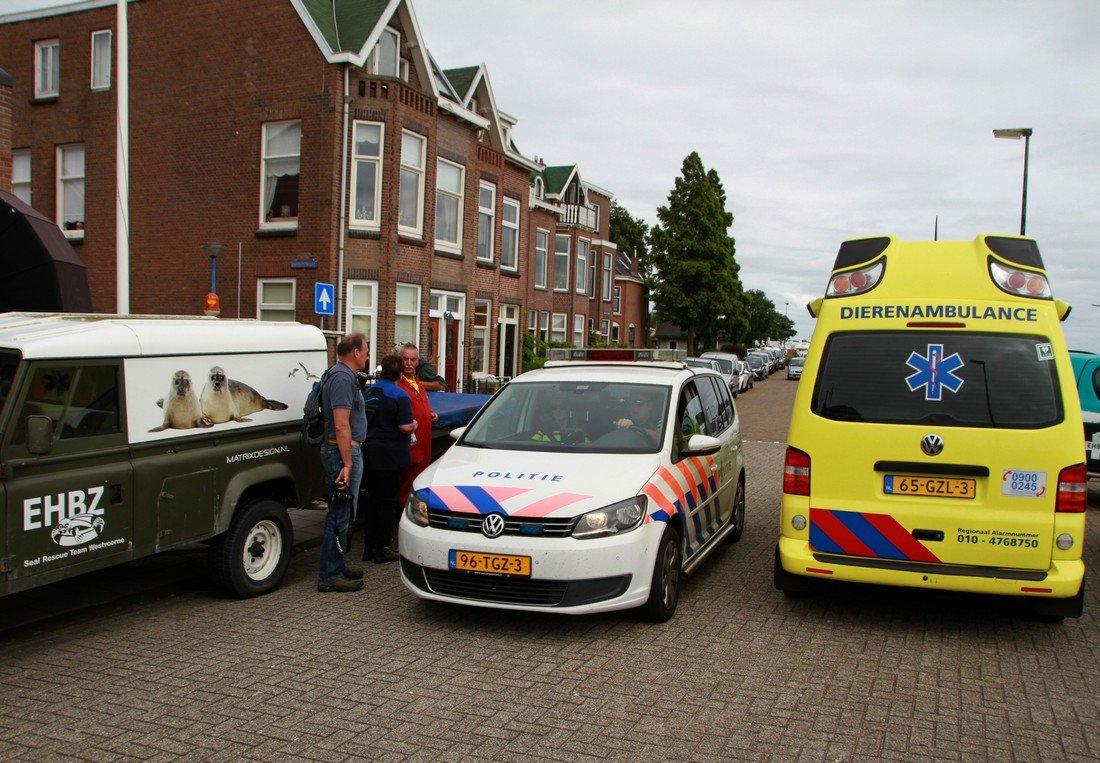 EHBZ helpt bij transport van olie slachtoffer Maassluis