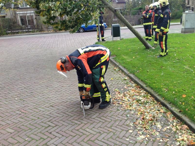 Stormschade (bomen) (VK: ) Willem de Zwijgerlaan Sassenheim