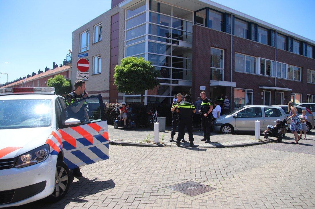 Pony en wagen vallen om Rijnsburg