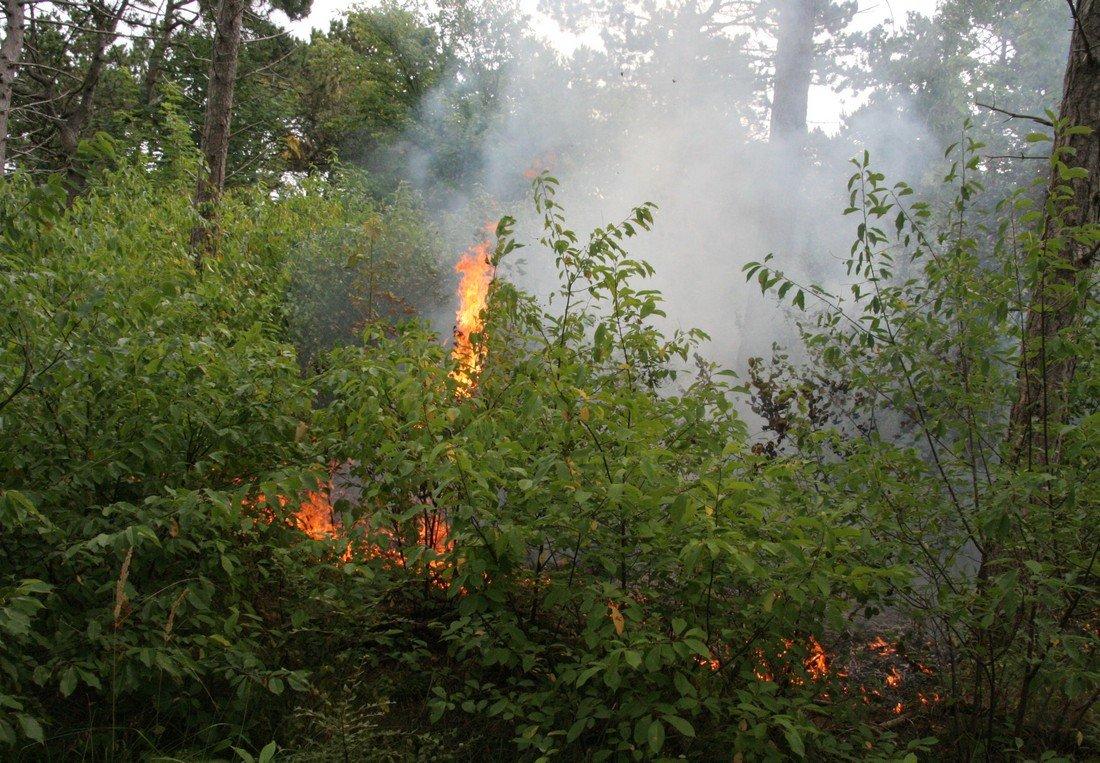 Duinbrand Noordwijk