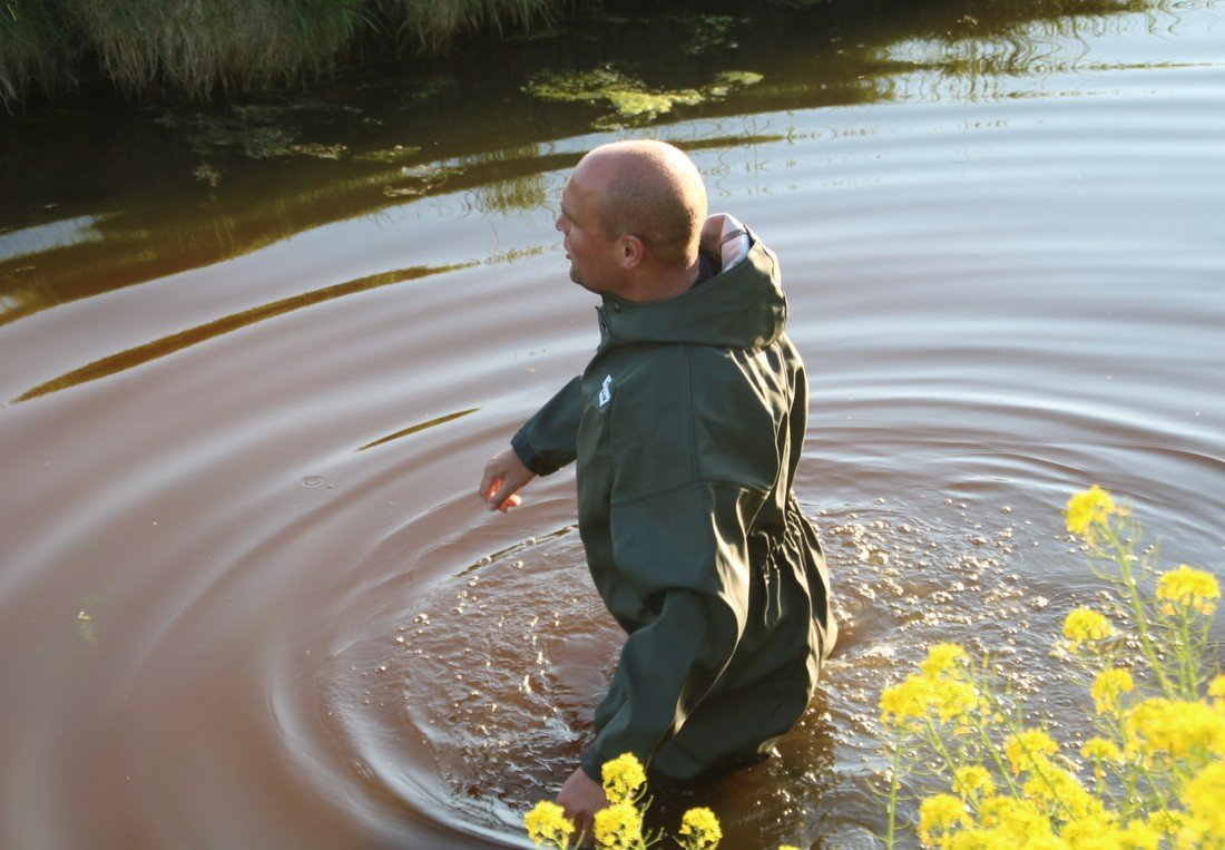 Schaap te water Randmeerstraat Lisse