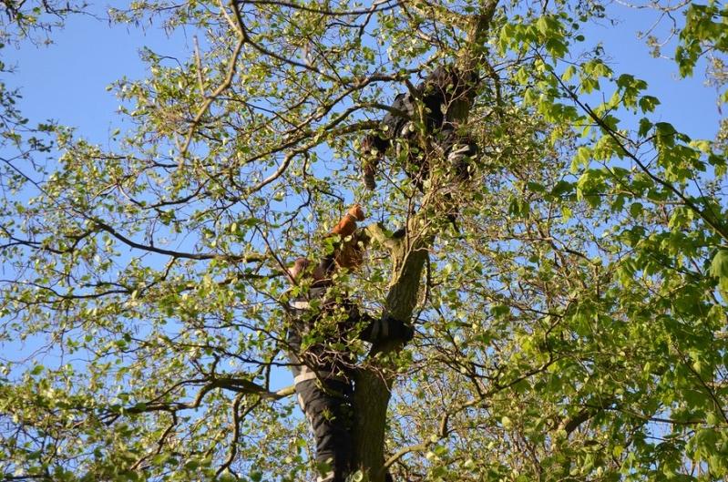 Dieren op hoogte Jacobapad Sassenheim