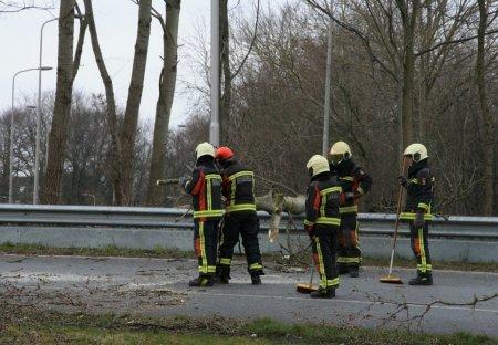 Boom valt over de afrit N206 Katwijk