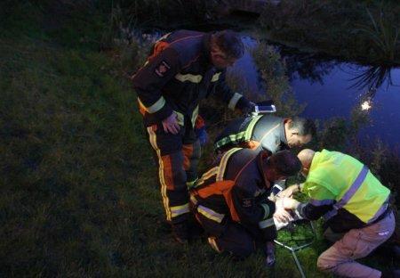 Dier in problemen Overbeek Noordwijk