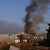 Varkens ontsnappen bij middelbrand Prinssenweg Voorhout